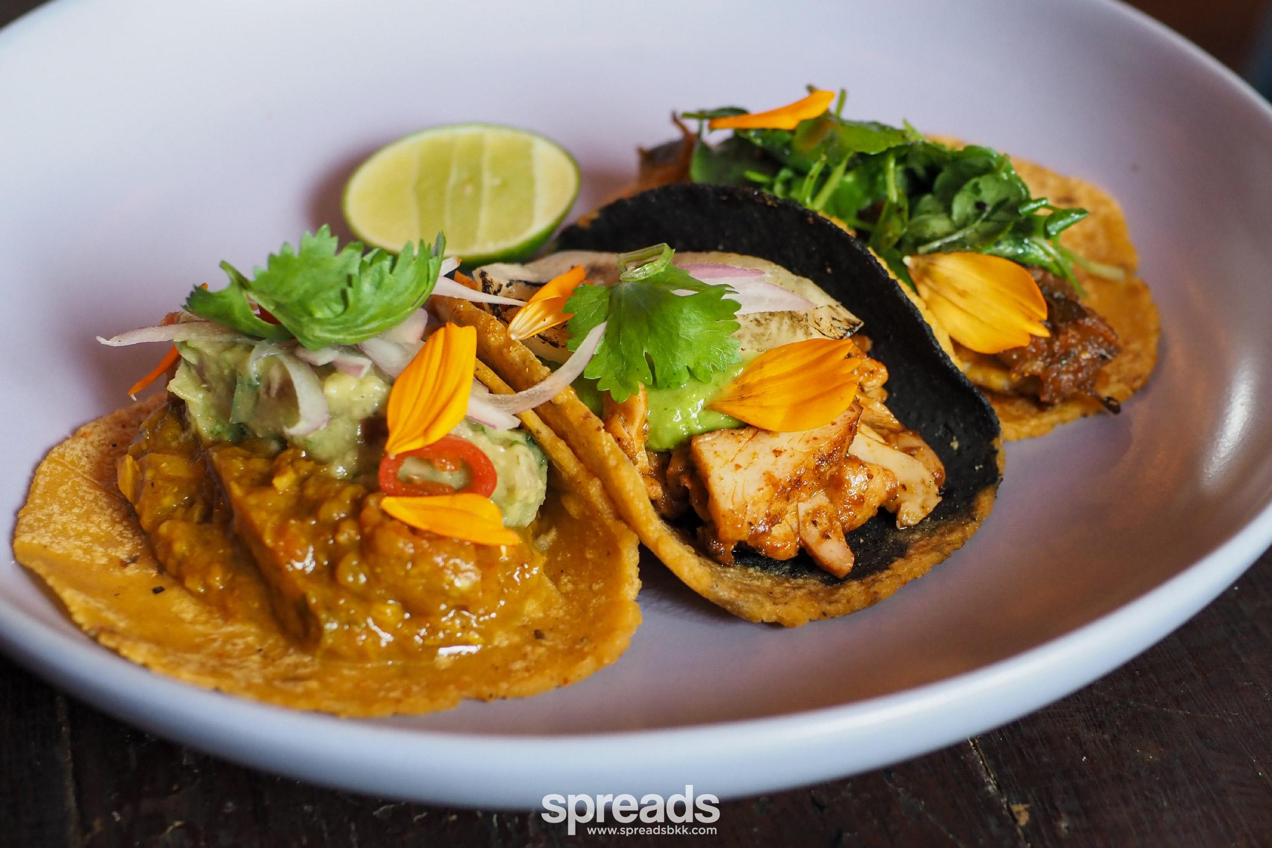 taco fest bkk ms maria & mr singh bangkok 2020